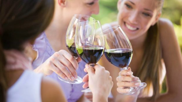 Come to our Mt Tamborine winery and enjoy fantastic offers on wines!